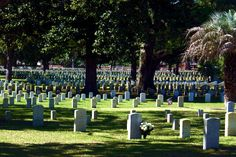 Historic Beaufort, South Carolina - Federal Military Cemetery