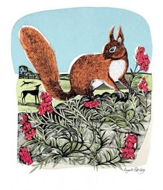 Red Squirrel and Wall Flowers  by Angela Harding   Block print and silkscreen