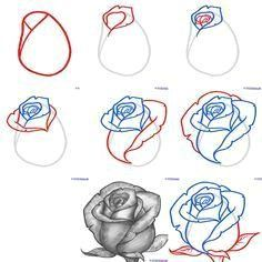 Exquisite Learn To Draw A Realistic Rose Ideas. Creative Learn To Draw A Realistic Rose Ideas. Realistic Flower Drawing, Cute Flower Drawing, Easy Flower Drawings, Beautiful Flower Drawings, Flower Drawing Tutorials, Pencil Art Drawings, Art Drawings Sketches, Tattoo Sketches, Easy Drawings