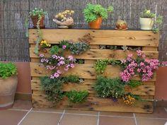 vertical pallet garden  #palletgarden #garden #pallets #homedecor #pallet