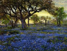 Old Live Oak Tree and Bluebonnets on the West Texas Military Grounds, San Antonio, Robert Julian Onderdonk