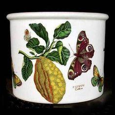 Portmeirion Botanic Garden Plant Pot 6 Inch CITRON or CITRUS --  Rare $112.00
