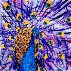 Peacock art 8x8 art print Tropical Bird Art by kauaiartist on Etsy