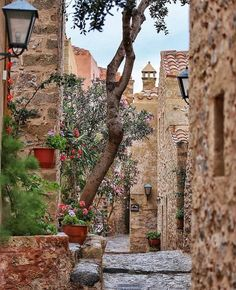 Plan your trip. Places In Europe, Places To Travel, Places To Go, Monemvasia Greece, Greece Pictures, Exotic Places, Travel Abroad, Greece Travel, Greek Islands