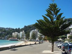 The foreshore, Oriental Bay, Wellington, New Zealand