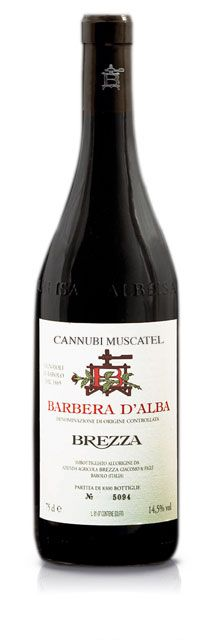 love Barbera wine!