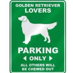 #lovemydog #goldenretriever