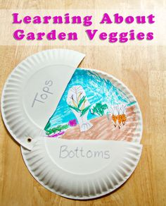 Teach your child how vegetables grow above and below ground with this fun gardening craft.