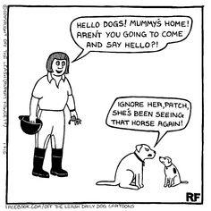 💕 Sunday Funny 😆  #offleash #Comics #Farside #Sundayfunday  #Sundayfunny #merryjaneandthor Funny Horses, Funny Dogs, Funny Animals, Hulk Sketch, Far Side Cartoons, Unique Dog Collars, Dog Jokes, Cartoon Dog, Dog Cartoons