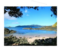 Weekly Travel Photo - Doubtless Bay, Coopers Beach, New Zealand! http://justchuckinit.com/weekly-photo-mojo-swing-life-away-in-doubtless-bay-new-zealand/