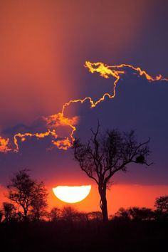 Kruger National Park beautiful #sunset! It's on my TOP 20 list on my blog http://the-black-monkey.com/blog/top-20-sunsets-in-the-world/