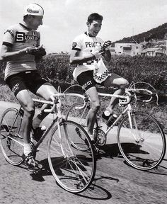 Félice Gimondi and Eddy Merckx, Giro d'Italia, 1967