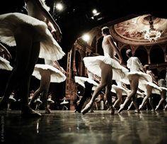 Swan Lake Rehearsal, Hungarian National Ballet. Photo by Andrea Paolini Merlo.