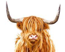 Highland vaca, Ilustración Animal moderno pintura Digital, impresión de Escocia,