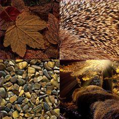 BRAUN die Farbe der Wärme und Geborgenheit Texture, Wood, Crafts, Astrology, Neutral Paint, Gemstone, Products, Get Tan, Nature