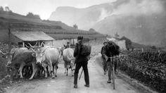 Tour 1927. L'Italien Michele Gordini dans les Pyrénées, lors de l'étape Bayonne-Luchon.