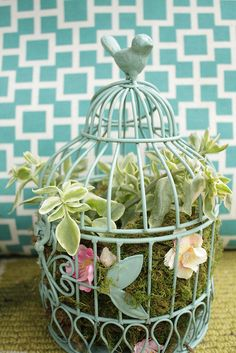birdcage succulent planter - i bet this is going to be GORGEOUS when it fills in ... would need to use a large enough cage so the scale is good ...