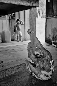 Compact Camera, Best Photo of the Day in Emphoka by Francisco Cribari, Fujifilm X100S, http://flic.kr/p/iNF9sW