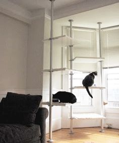 cat-furniture-tree-condo-shelves