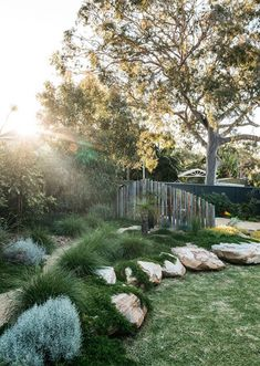 This Woolooware garden from Grant Boyle came with a strong brief to maximise native plant life and some inventive upcycling. Landscape Design Plans, Landscape Architecture Design, Landscape Edging, House Landscape, Landscape Art, Landscape Paintings, Landscape Photography, Landscape Rocks, Australian Garden Design