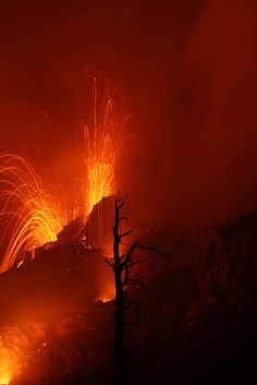 Volcan Pacaya - Guatemala