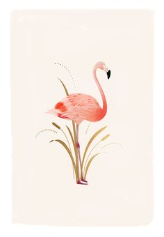 Flamingo Illustration by Cocorrina | Wallpaper Download