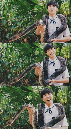 Jhope ♡ lol I hate snakeu Namjoon, Seokjin, Taehyung, Gwangju, Jung Hoseok, Jimin, Bts Bangtan Boy, Yoongi Bts, Foto Bts