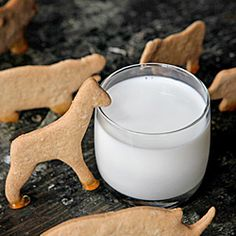 """Homemade animal crackers: no frosting, no sprinkles. Just a super crisp, barely sweet """"cracker"""" that's begging for a glass of milk."""