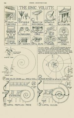 Fletcher -- The Ionic Volute by thelck, via Flickr