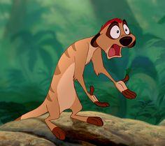 Timon -- The Lion King