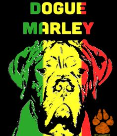 Dogue Marley - Who can resist the calm influence of the DDB or Reggae music!
