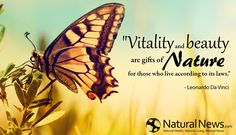"""""""Vitality and beauty are gifts of nature for those who live according to its laws."""" - Leonardo Da Vinci"""