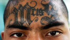 MS-13 gang member… The plight of a nation