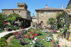 Castello di Spedaletto - Montalcino - Siena