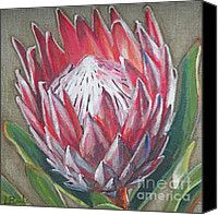 Protea Canvas Print / Canvas Art by Leigh Banks Acrylic Flowers, Oil Painting Flowers, Abstract Flowers, Oil Painting Abstract, Acrylic Art, Painting & Drawing, Watercolor Art, Flower Paintings, Acrylic Paintings