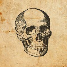 Digital Vintage Skull Vector