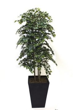 Artificial Birch Tree From Evergreen Direct