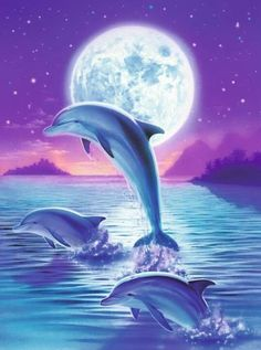 Day Of The Dolphin Art Print by Robin Koni. All prints are professionally printed, packaged, and shipped within 3 - 4 business days. Choose from multiple sizes and hundreds of frame and mat options. Dolphin Images, Dolphin Photos, Dolphin Painting, Dolphin Art, Dolphins Tattoo, Water Animals, Beautiful Nature Wallpaper, Cute Animal Drawings, Ocean Life