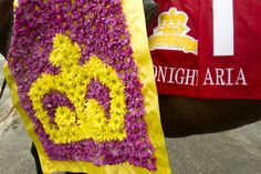 In Pictures: Midnight Aria wins the Queen's Plate Plates, Queen, Blanket, Pictures, Licence Plates, Photos, Dishes, Plate