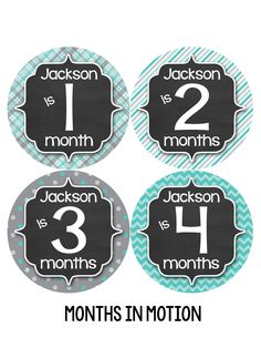 Personalized Baby Boy Monthly Stickers Style #489