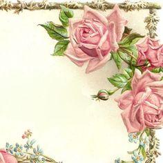 PINK ROSES  amp Slender Branches Vintage Rose Frame