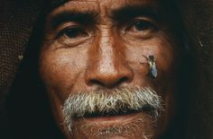 himalayan honey hunters | ... is a chore, spare a thought for the Honey Hunters of Nepal