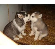Daj buziaka Maleńka