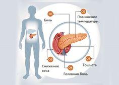 Поджелудочная железа является незаменимой частью в сложной системе нашего организма. Важно вовремя распознать симптомы нарушения работы этого органа.