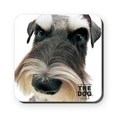 Artlist Collection THE DOG Miniature Schnauzer Coaster $6.74