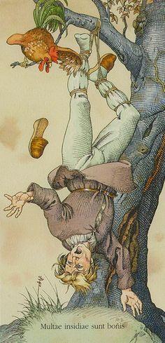XII. The Hanged Man: Dürer Tarot