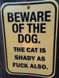 """""""Beware of Dog"""" and related parody signs that use irony, humor, clever wording, and bizarre imagery to make one laugh. Funny Shit, The Funny, Funny Cats, Funny Animals, Funny Sarcasm, Funny Life, Funny Stuff, Cats Humor, Dog Humour"""