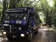 A beautiful drive through bamboo forests in Guinea's Forest region, close to the border with d'Ivoire- on our West Africa trip from Freetown to Accra Overland Truck, Accra, West Africa, Forests, Monster Trucks, Bamboo, Gallery, Beautiful, Roof Rack