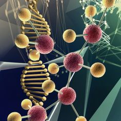 Researchers have created a new type of molecular motor made of DNA and demonstrated its potential by using it to transport a nanoparticle along the length of a carbon nanotube.