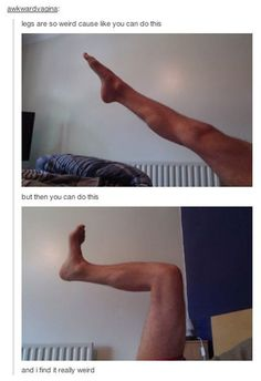 Legs Are Really Weird